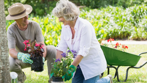 The Surprising Ways Gardening Can Benefit Seniors